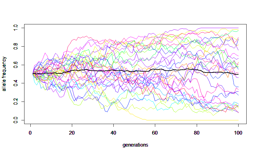 Genetic Drift - Genetics Wiki