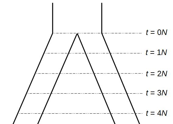 popsplitequal